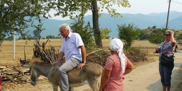 albanija-donkey